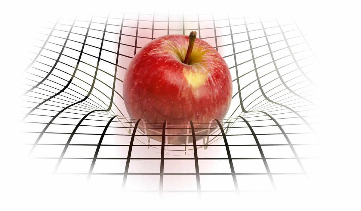 http://bourabai.ru/boyarintsev/img/newton_fake_apple.jpg
